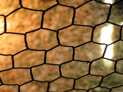 vinyl coated chicken wire netting