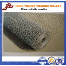 Hexagonal Wire Mesh for Poultry Cage (ISO9001: 2008 professional manufacturer)