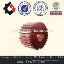 Casting Straight Teeth Gear China Supplier