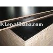 Melamine gule black Film faced plywood