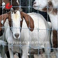 Goat Fence Prices