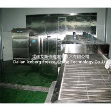 Máquina individual de congelamento fluidificada