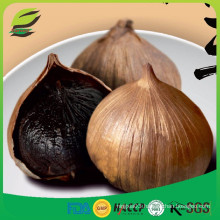 Korean hot sell single bulb black garlic