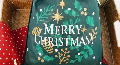 Chirstmas Gift Bag