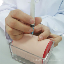 Nursing Training Multifunctional Injection Practice Model