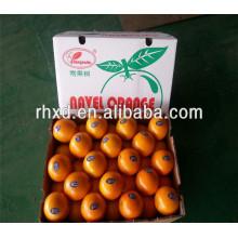 Heiße verkaufende billige Orangen für Großverkauf