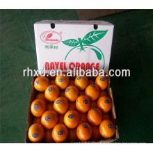 Hot selling cheap oranges for wholesales