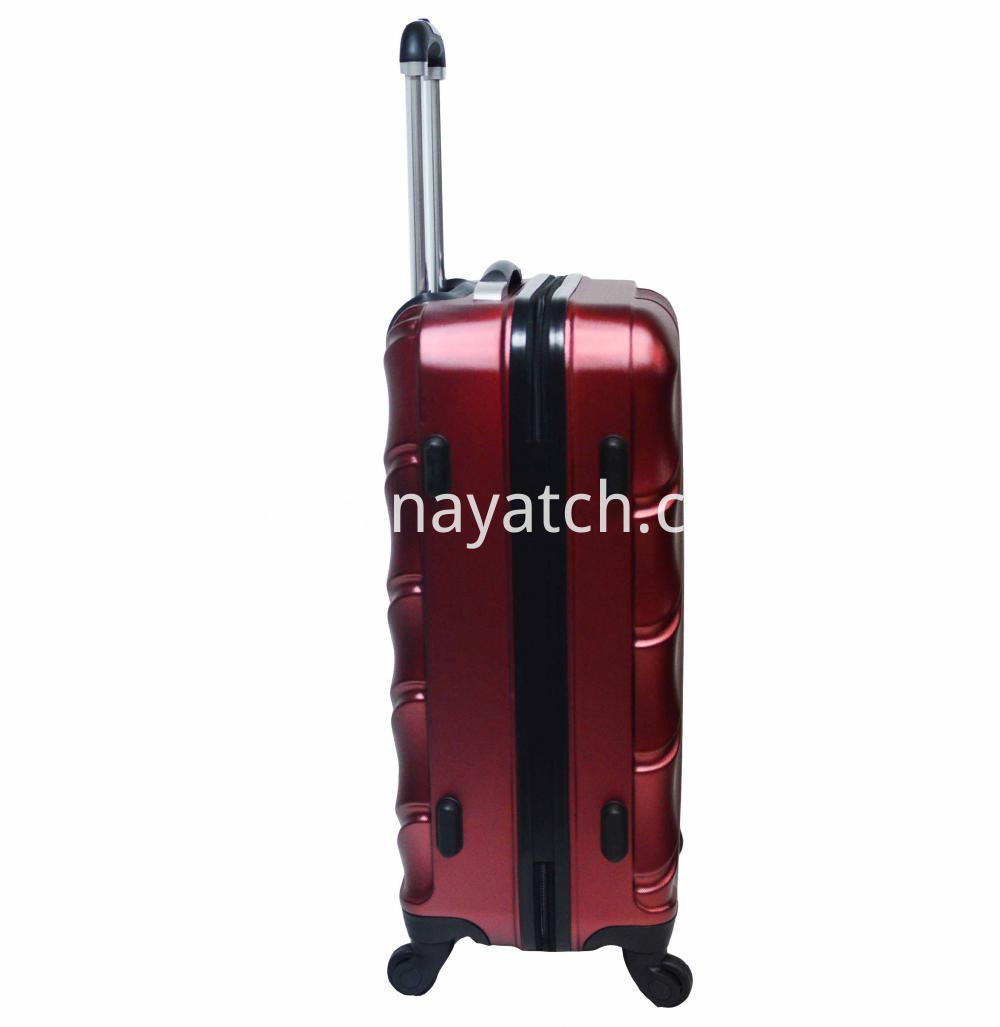 PET wheeled luggage