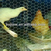 Fil de poulet Coop fabrication à vendre