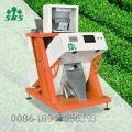 Хэфэй Аньхой цена завода Лучшее качество риса сортировщик цвета с камерой CCD