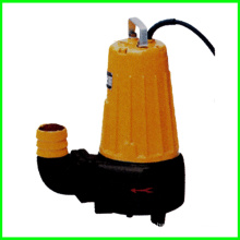 Sludge Pump with Submersible Affluent Pump