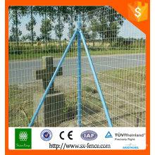 Maillage de fil Hollandais / maillage de fil néerlandais / clôture en euros