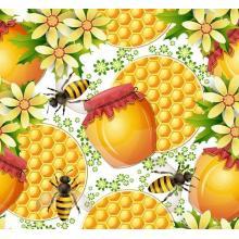 100% Certified Organic Acacia Honey