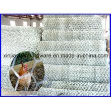 Prix à bas prix Hexagonal Wire Netting