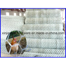 Cheap Price Hexagonal Wire Netting
