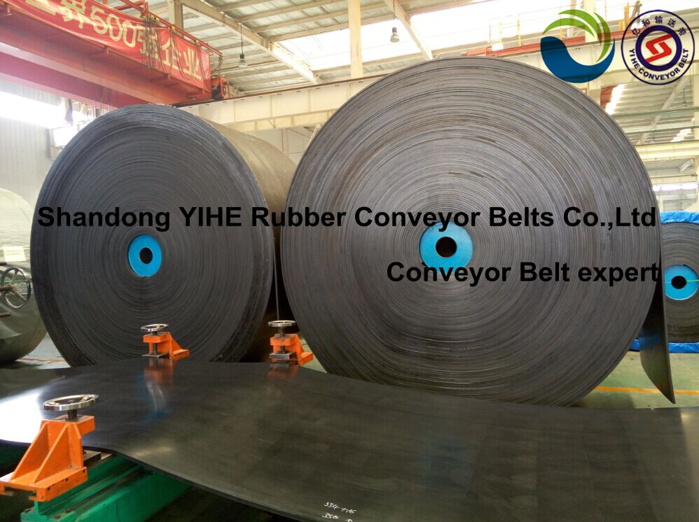 Wear resistant conveyor belt