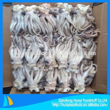 supplier of high quality frozen squid head and squid tentacle