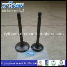Auto Parts Engine Valve for Suzuki 462
