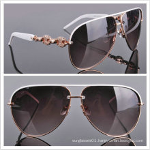 Acetate Sunglasses/ 2013 Top Fashion Sunglasses/ Sunglasses
