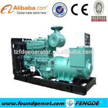 Top Ten Lieferant TBG Serie 1200KW Gasgenerator Preis