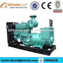 Top dix fournisseur TBG série 1200KW générateur de gaz prix