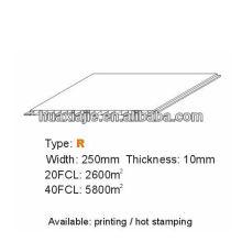 PVC interior panel250mm*10mm
