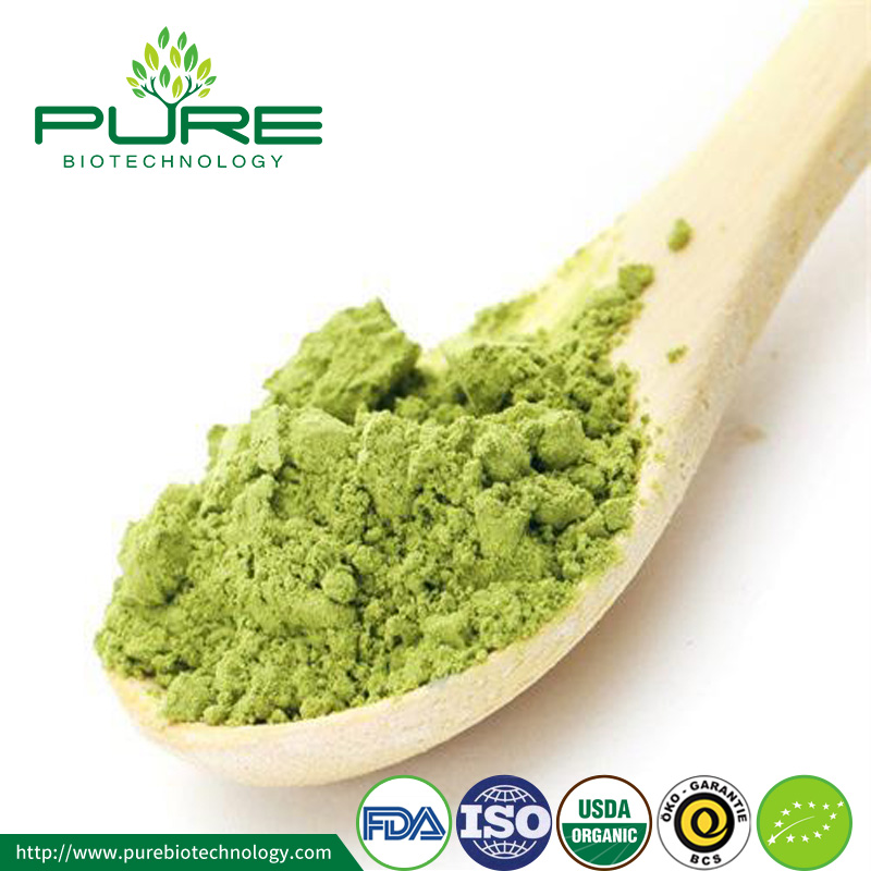 Organic Matcha Green Tea Powder with Low Price