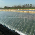 LDPE Agriculture Plastic Film Greenhouse Film