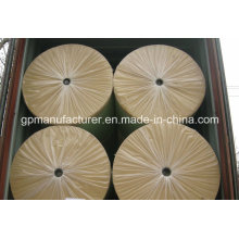 Sbs/APP Bitumen Used Needle Punched Polyester Mat