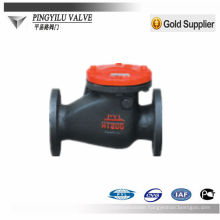 casting iron swing start check valve