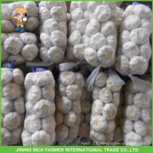 Fresh Style New Crop Ail frais Ail pourpre 5.0 cm 1kg / Mesh Bag