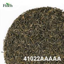 Finch melhor dieta Chunmee chá verde 41022AAAAA
