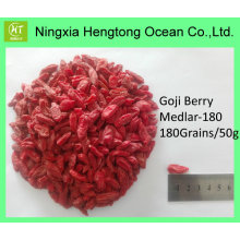 Hot Selling Fresh Crop Goji Berry