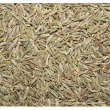 2015 New Crop Healthy (ISO) Cumin Seeds