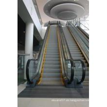 FUJI Zy Energysaving Top 6 mejor compra Escalera Escalada Increíble