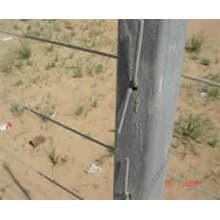 Protege playas y dunas de la erosión natural cerca de la arena de metal