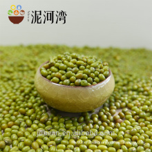 HPS top quality Green mung bean for sprouting (GF3)