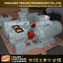 Horizontale Pumpe (YHCB)