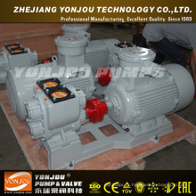 Pompe horizontale (YHCB)