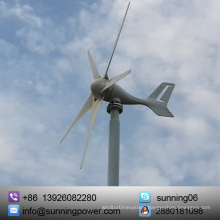Hybrid Solar Wind System Small Wind Generator 300W with Low Price