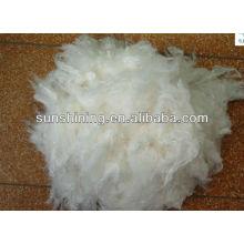 Fibra de soja vendedora a quente de fibra 1.5D * 38MMfuncional