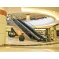 FUJI 35 Degree 600mm Step Width with Claddings Escalator