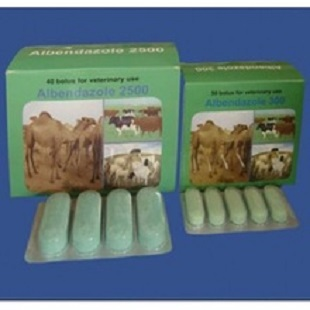 Veterinary medicine Albendazole300mg.jpg