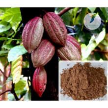Producto sexual ampliación del pene granos de cacao sin procesar orgánicos