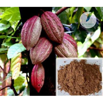 Sex Produkt Penisvergrößerung rohe Kakaobohnen Bio