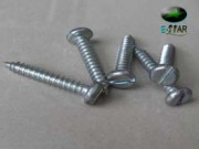 button head. self-tapping screw
