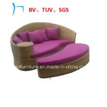 Lit de jour de loisirs de meubles de rotin de meubles extérieurs (FL015)