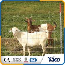Hengshui En Gros alibaba Chine CE et ISO9001 1.2 m 1.5 m hauteur, galvanisé en acier barrière de cerf (fabricant pro)