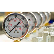 Best Quality Ordinary Stainless Steel Pressure Gauge with Cheap Price