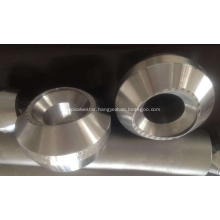 Stainless Steel 304 316L Forged BW Pipe Fitting Weldolet